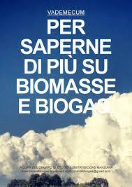 Vademecum per saperne di più su biomasse e biogas
