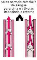 As válvulas normais impedem o retorno do sangue dentro das veias