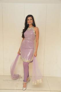 Hasha Nandini pos at cmr aashadam event 002.jpg