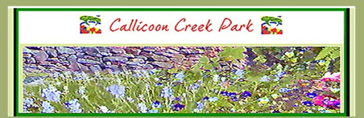 The Callicoon Creek Park