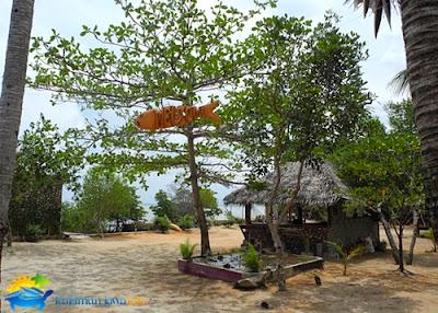 omah alchy cottages karimunjawa