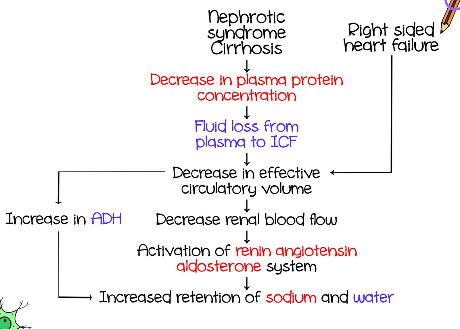 Benedikt Syndrome