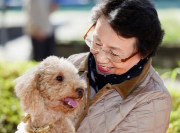 Dog Knotting Woman