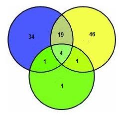 Diagram venna matematyka moja pasja diagram venna suy do pokazywania czci wsplnych zbiorw czsto jest on przedstawiany jako zbir okrgw odpowiednio na siebie naoonych ccuart Choice Image