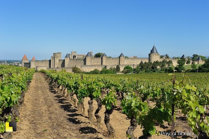 Carcassonne vue des vignes photo pascal blachier au delà du cliché