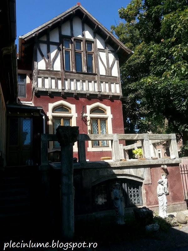 Casa familiei Storck