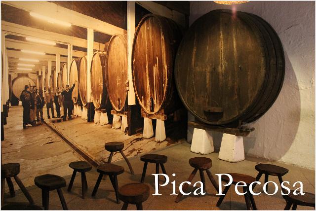 museo-de-la-sidra-de-asturias-nava