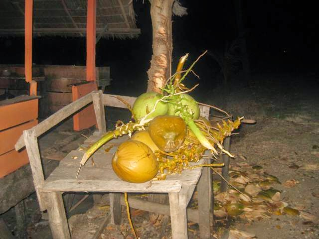 kedai kelapa muda apoang saat malam hari