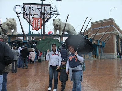 comerica park, rain delay, tigers baseball game