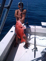 Red Snapper Florida Mini-season