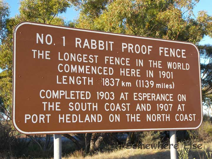essay on rabbit proof fence belonging
