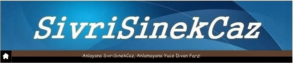 SivriSinekCaz