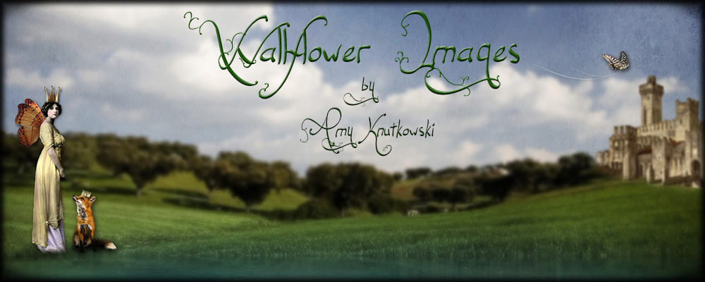 Wallflower Images