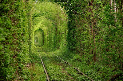 Tunnel-of-Love-Klevan-Ukraine-beautiful-places