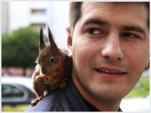 lovable friendship with Squirrel