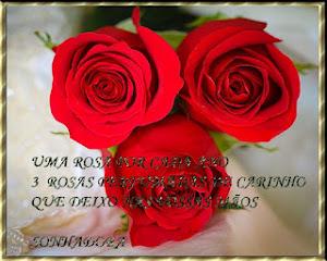 Rosa Solidão
