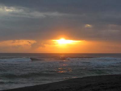 Playa Gandoca, Limón