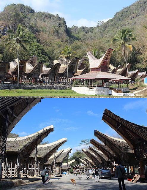 Jelajah Sulawesi