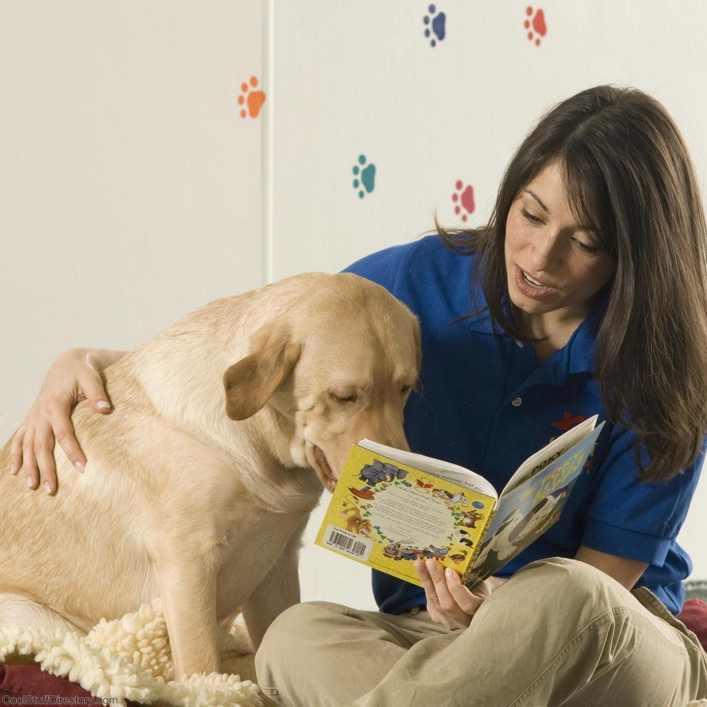40. Dog Reading book Images