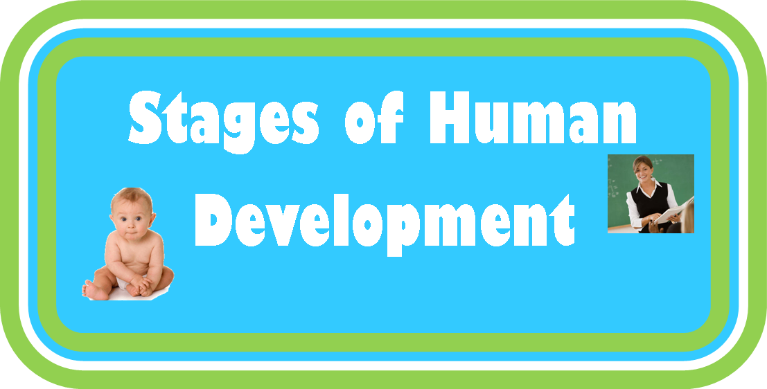 Folder Games and More: Stages of Human Development