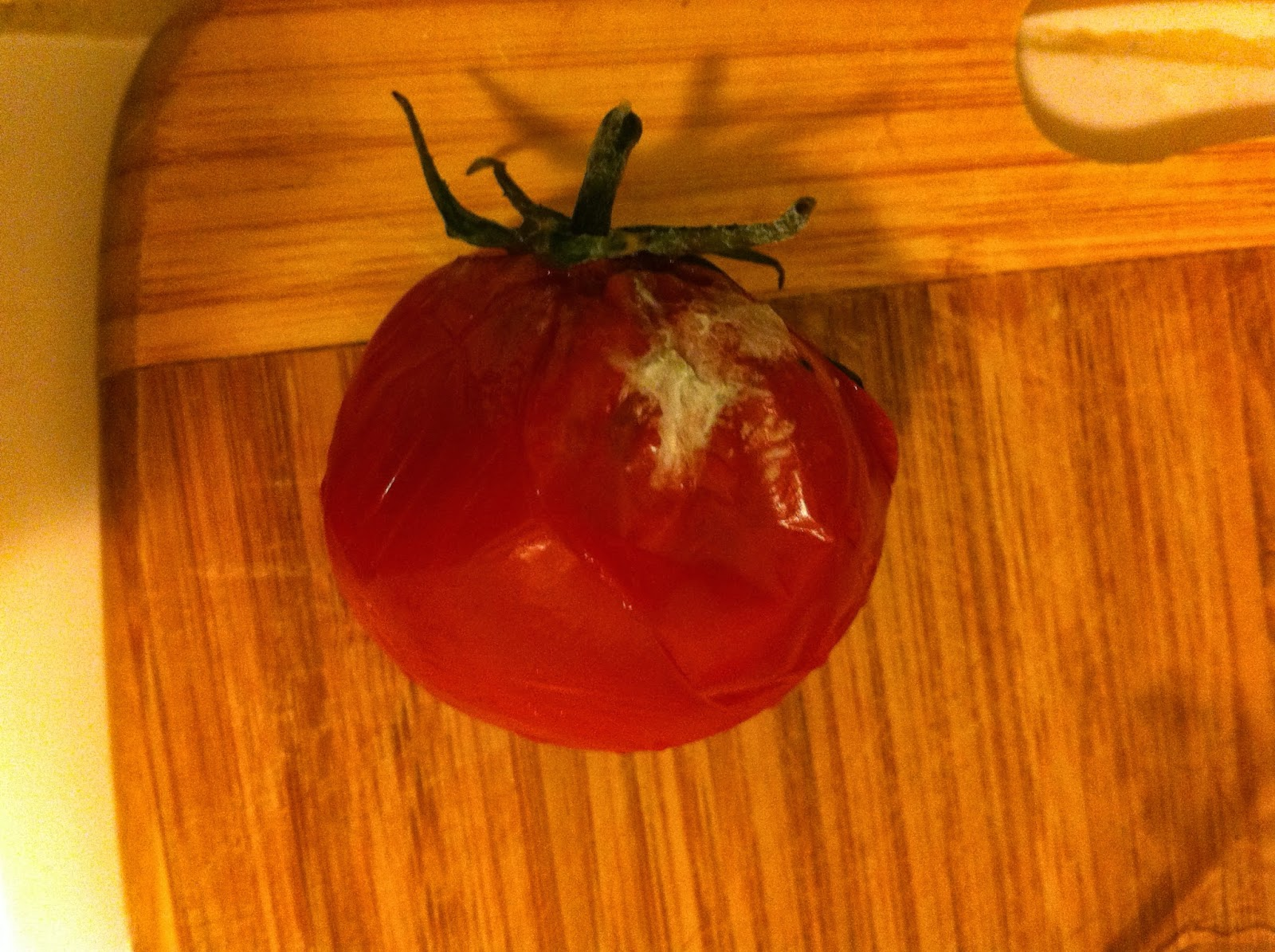 Picture of moldy tomato