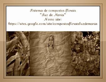 O MUNDO PRECISA DE FLORES E AMORES