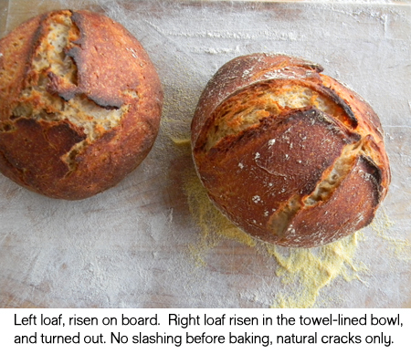 Pictorial > How to Form a No-Knead Loaf