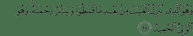 Surat Asy-Syura ayat 28