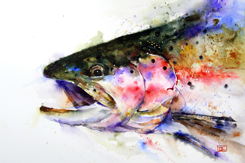 Trout fishing paintings