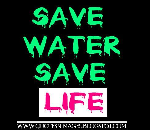 Water Is Life Quote Magnificent Quotes And Sayings Quotes About Water