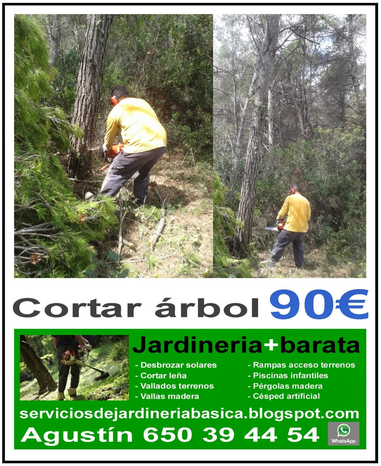 Serviciosdejardineriabasica jardineria barata 90 cortar for Jardineria barata barcelona