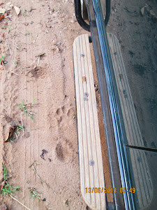 """TIGER PUG MARKS"" along the jeep tracks."