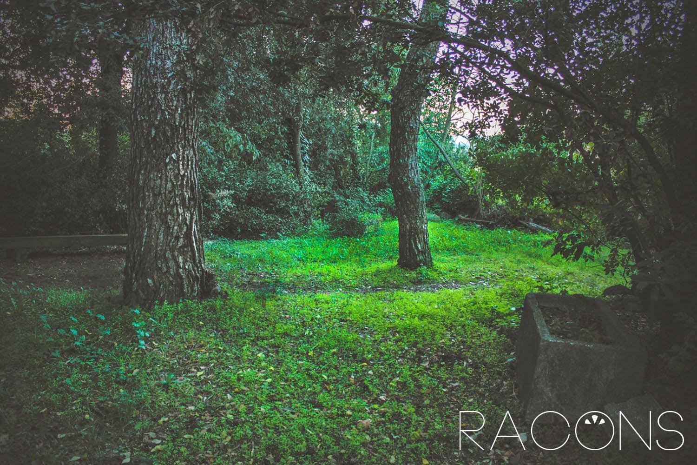 Racó amagat dels jardins de la jueva