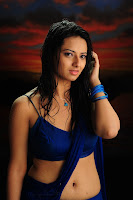 Poola Rangadu Actress Isha Chawla Deep Navel Show HQ Stills