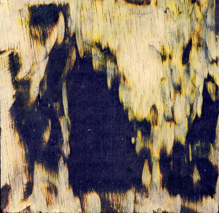 bois peint-gravé 1