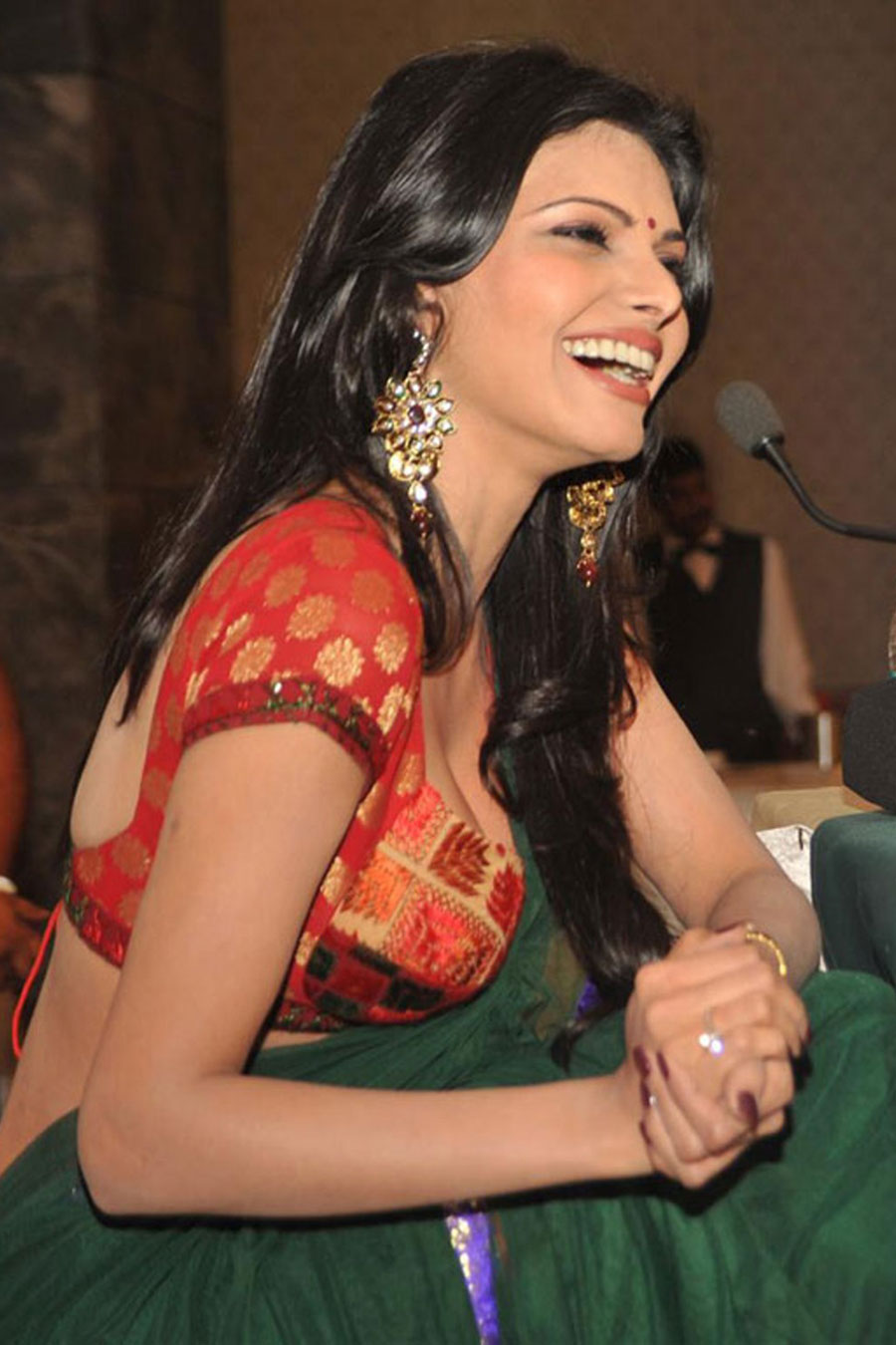 sherlyn chopra in saree actress pics