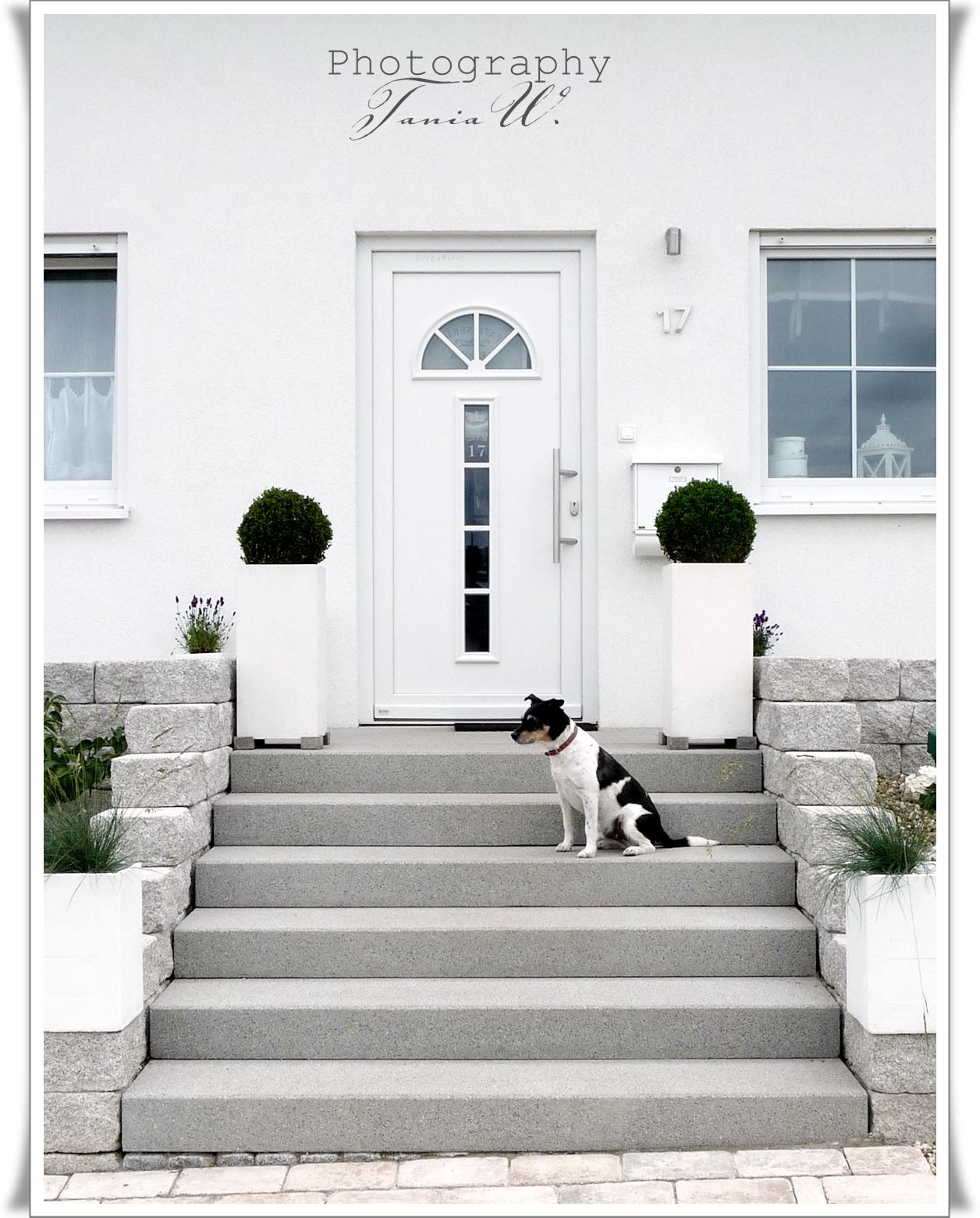 homely tw fotos und inspiration. Black Bedroom Furniture Sets. Home Design Ideas