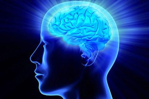 18 Cara Meningkatkat IQ Otak Anda