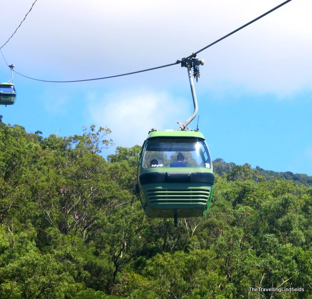 Skimming the tree tops. & The Travelling Lindfields: Skyrail Rainforest Cableway: Cairns to ...