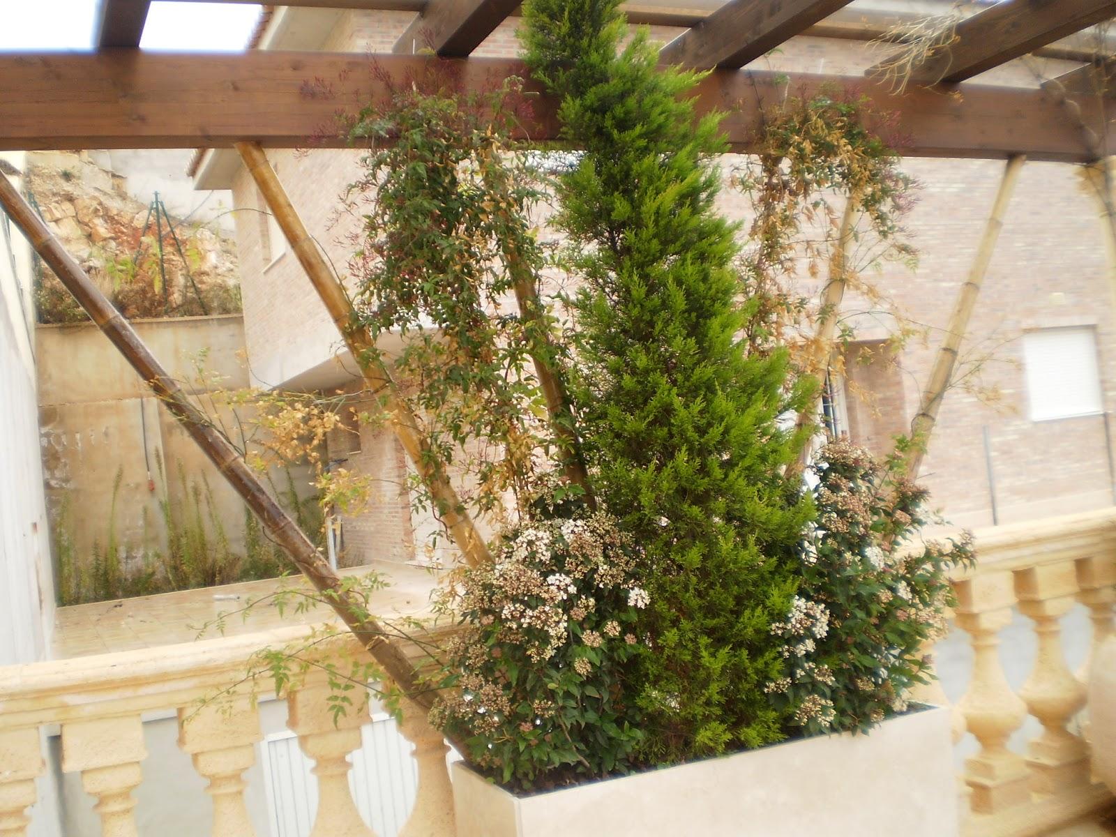 Bambu Decoracion Jardin ~ Crea tu Jard?n Decoraci?n con bamb?