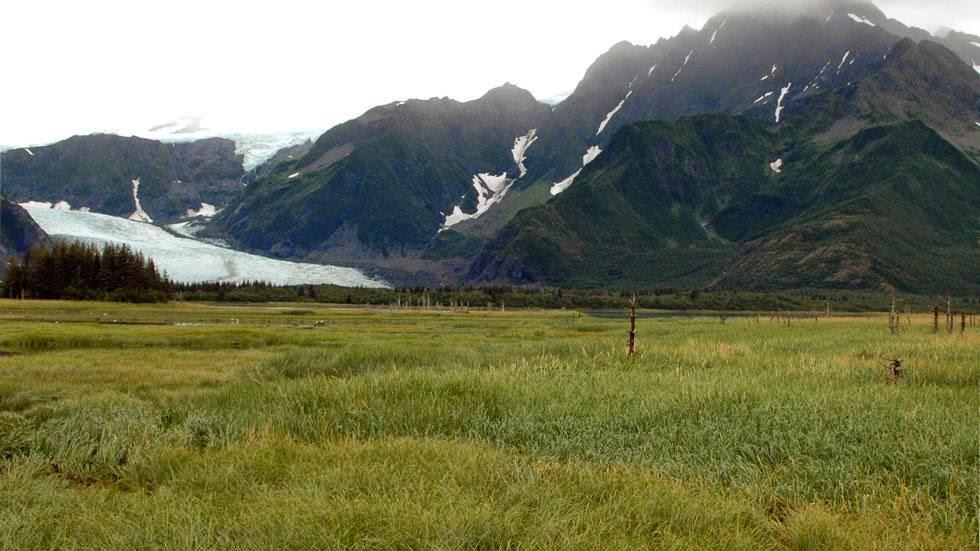 Las huellas del cambio climático en Alaska durante más de 100 años Pedersen+Glacier+(2005)+-+This+is+Alaska's+Muir+Glacier+&+Inlet+in+1895.+Get+Ready+to+Be+Shocked+When+You+See+What+it+Looks+Like+Now.
