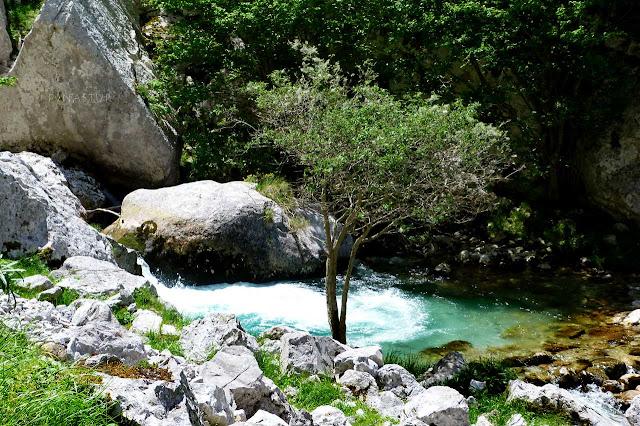 Pequeña poza en el Río Bulnes o Texu - Canal del Tejo - Asturias