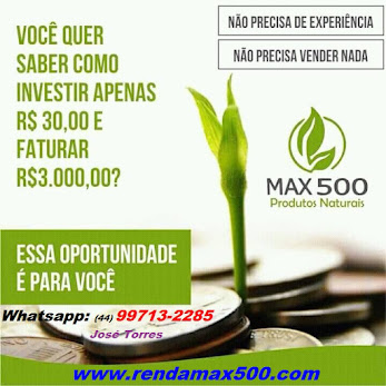 Renda Online e Of-lline Max 500