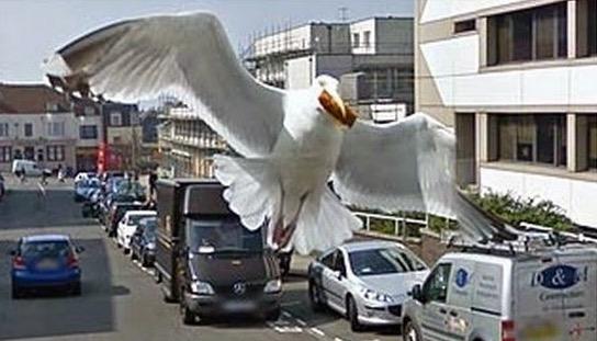 Gambar Kejadian Pelik yang Dirakam Google Street View