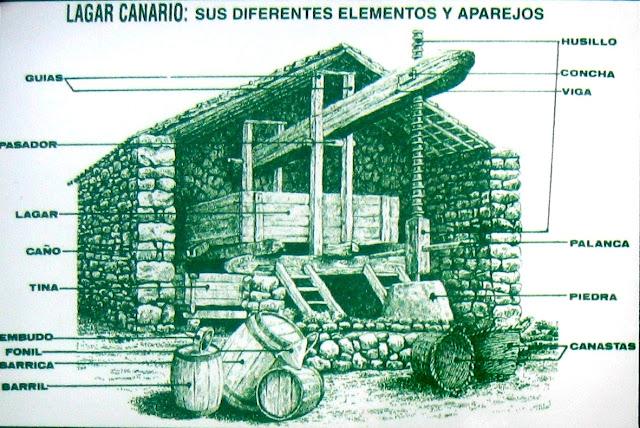 LOS LAGARES EN CANARIAS - Blog MIS GUACHINCHES PARRANDEROS