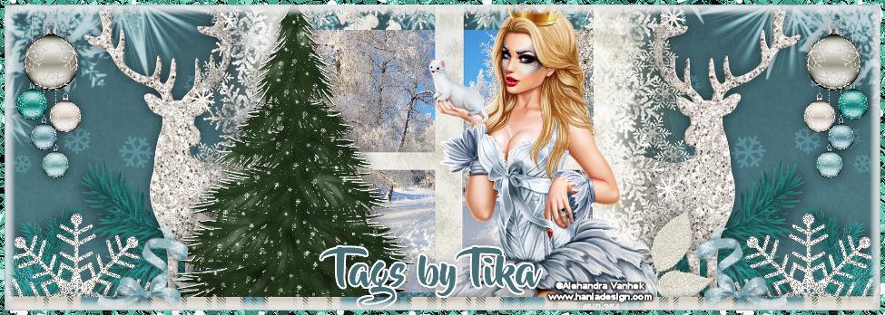 Tags By Tika