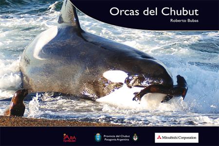Roberto Bubas - Libro - Orcas del Chubut