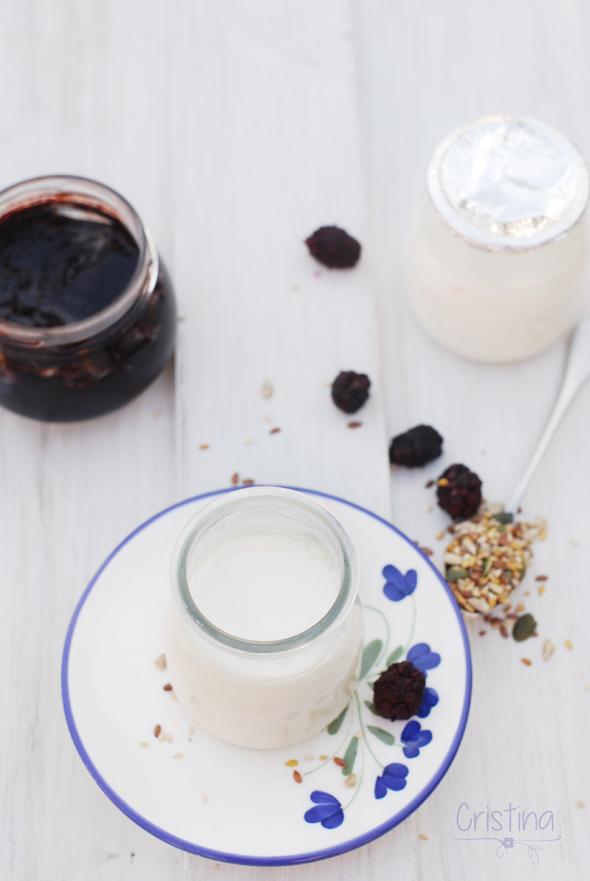 yogures con mermelada y semillas