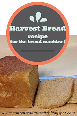 harvest bread recipe for the bread machine