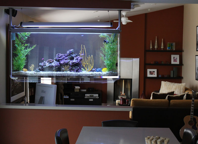 The Best Aquarium Design For Home Interior ~ Home Interior Project